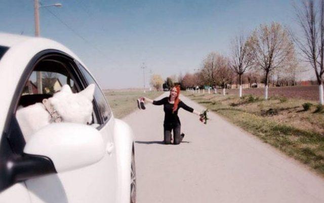Kako bi izgledalo kada bi pas napustio vlasnika: Ova Subotičanka je to ilustrovala!